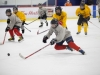 Rosters for Phase 2 Peewee 'A' Camp Released
