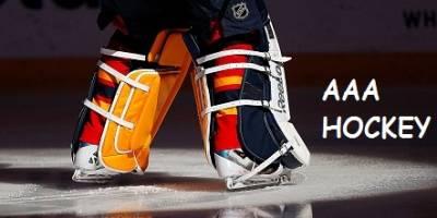 Message from HNL Minor Council Regarding AAA Hockey