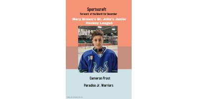 Sportscraft Forward of the month for December 2019