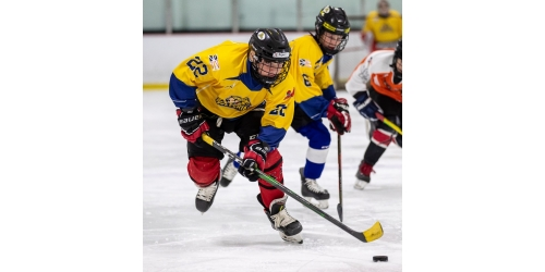 Pooled Hockey Registration is Now Open!