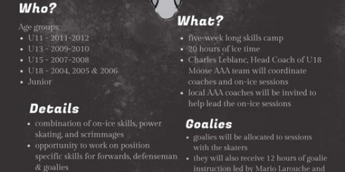 Northern Moose 2021 Summer Hockey Camp